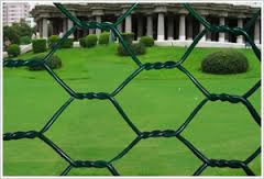 PVC Coated Wire Twisted Chicken Netting