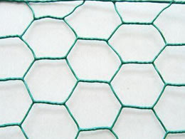 Chicken Wire Made with Plastic Coated Steel Wire Material