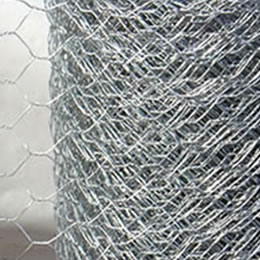 Stainless Steel Garden Wire Netting