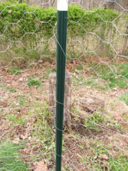Green Plastic Coated Fence Post